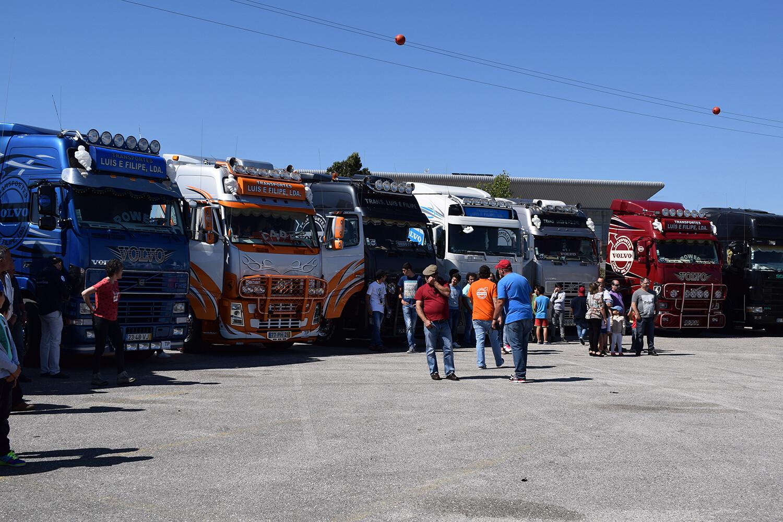 A Transportes Luís & Coelho foi a Empresa com Maior Participação