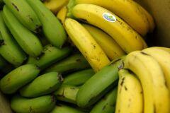 Bananas ou bebidas energéticas para treinar?-image