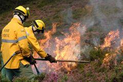 Fogo controlado para defesa da floresta contra incêndios-image