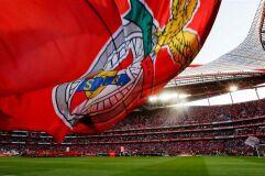 Benfica contradiz suspeitas sobre aliciamento aos jogadores do Aves-image