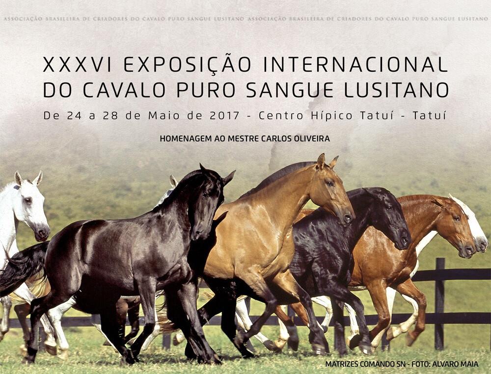 Exposição Lusitanos Brasil.jpg