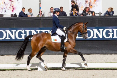 Lusos no mundial de Cavalos Novos