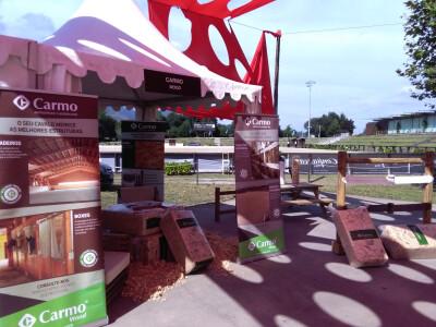 Carmo estreia-se em Ponte de Lima