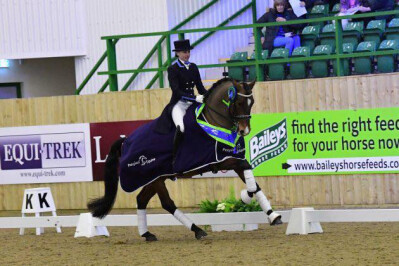 Lusitano vence nos Winter Dressage Championships