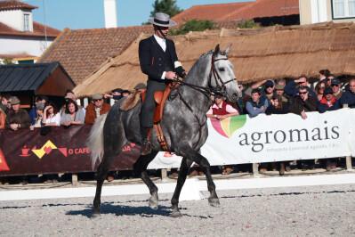 Cavalos desfilaram no Arneiro