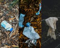 Com o fim do confinamento a poluição aumenta em Santo Tirso-image