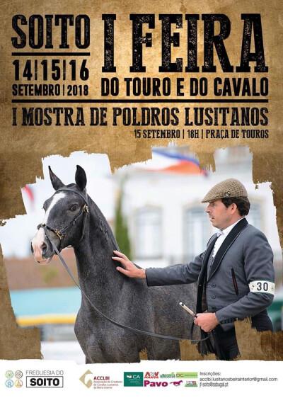 Feira do Touro e do Cavalo do Soito
