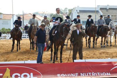 Festa do Cavalo na Equitação TV