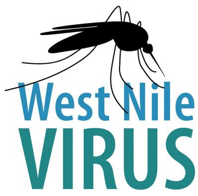 Infecção por vírus do Nilo Ocidental no Alentejo